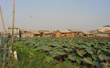 cambodia land management
